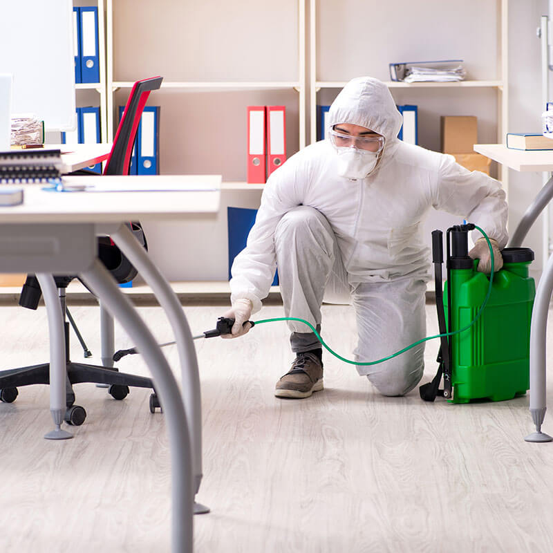 Commercial Pest Control Services in Michigan